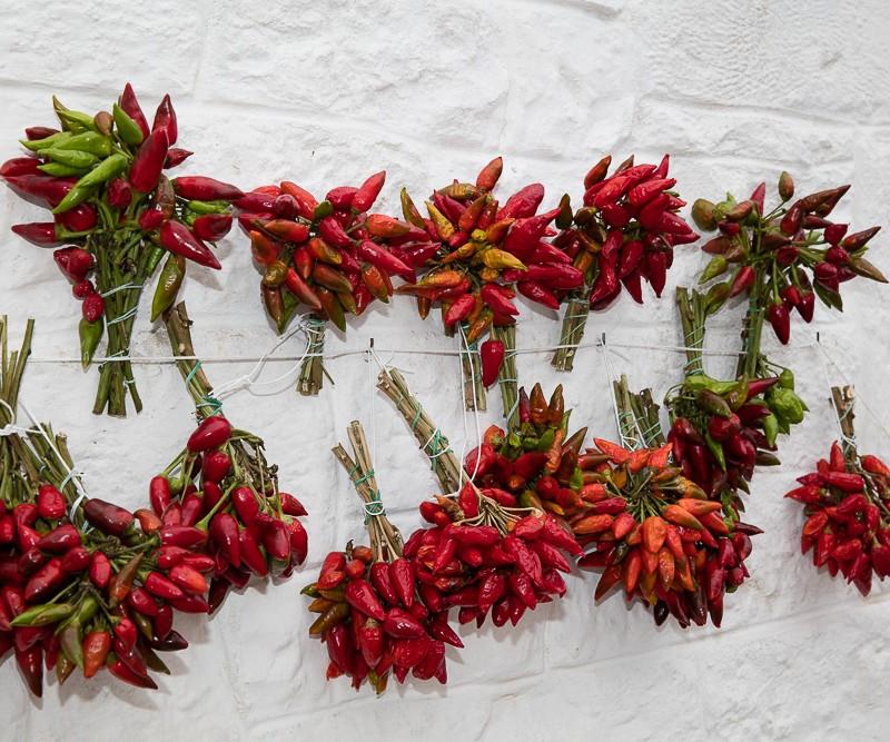 #canon, Eté, Fleurs, Personnes, canon, et, italie, marwan moussa, paysage, photographie, plantes, www.marwanmoussa.com
