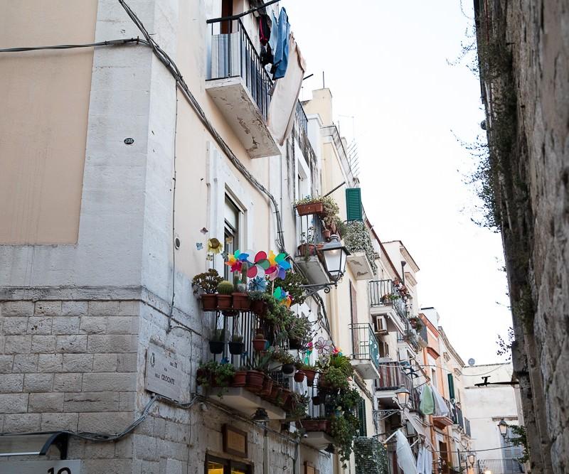 BARI, Fleurs, italie, marwan moussa, payssage, www.marwanmoussa.com