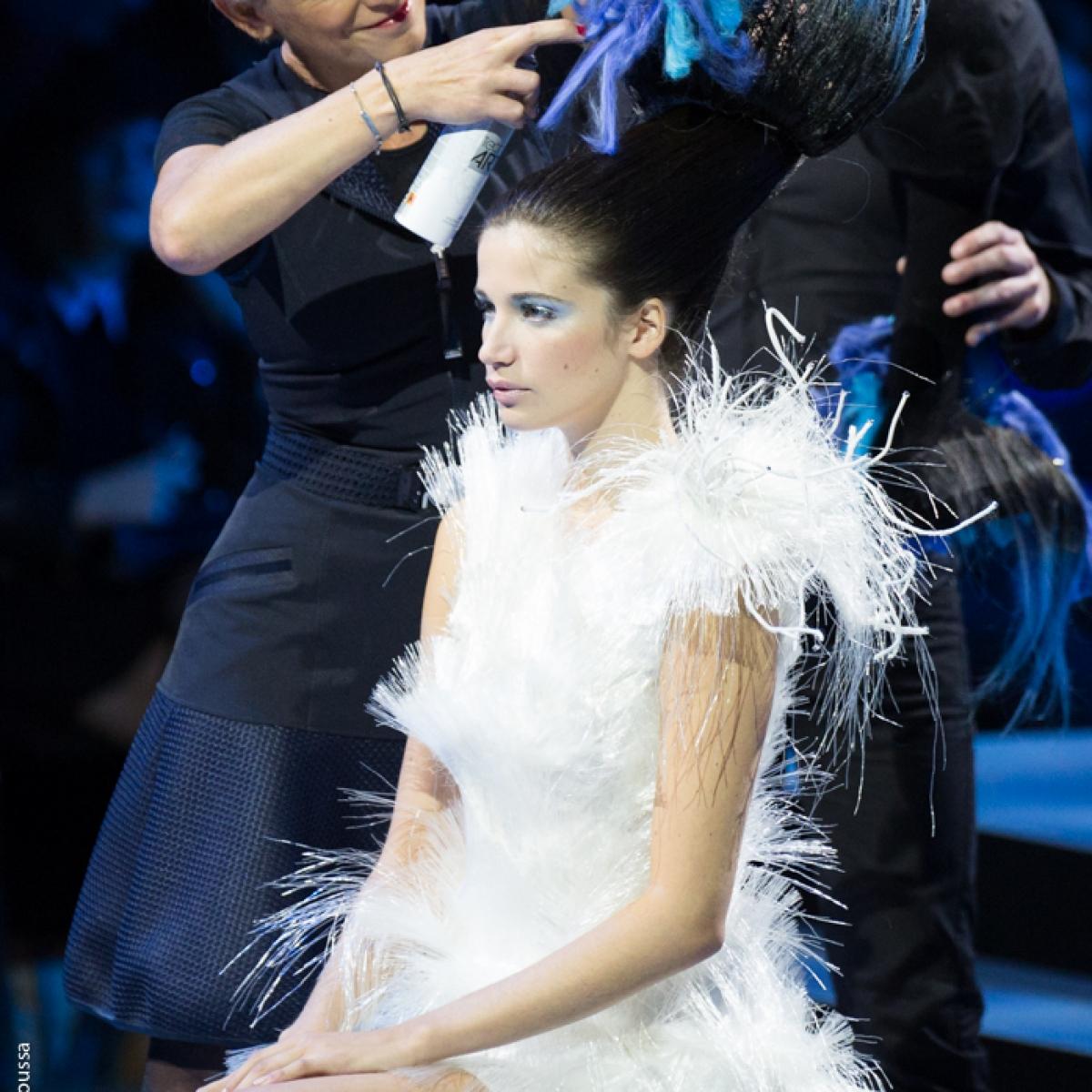 haute coiffure francaise 2016-61